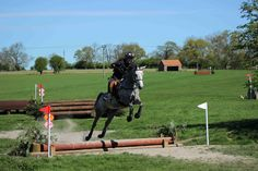 From David, Stock-on-Tees | The Jacksons BIG Equestrian Picture Competition #horse #jump #competing #equestrian
