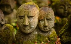 moss-covered statues at the delightful Otaginenbutsuji Temple (愛宕念仏寺) in Kyoto Japan