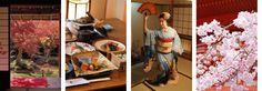 Honeymoon in japan!