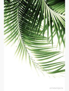 Palm Leaves Green Vibes Art Print by Anita's & Bella's Artwork - X-Small Tropical House Design, Tropical Home Decor, Tropical Colors, Tropical Houses, Tropical Leaves, Tropical Plants, Tropical Interior, Palm Leaf Wallpaper, Plant Wallpaper