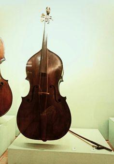 Violone,Andrea Guarneri (1692)