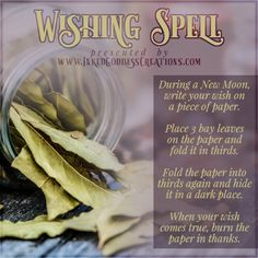 ~Wishing Spell~ During a New Moon, write your wish on a piece of paper. Place 3 bay leaves on the paper and fold it into thirds. Fold the… paper paper napkins paper to the moon Hoodoo Spells, Magick Spells, New Moon Phase, Wish Spell, Tarot, Money Spells That Work, Moon Spells, Witchcraft Spell Books, New Moon Rituals