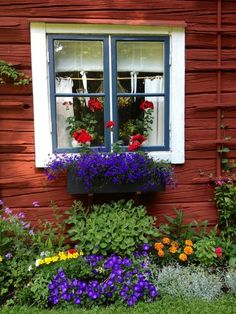 rabatt torp I love all the colors - Sweden! Swedish Cottage, Swedish Decor, Red Cottage, Swedish Style, Swedish House, Swedish Farmhouse, Red Houses, Garden Windows, Window Boxes