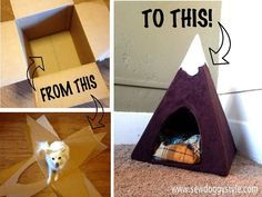 Sebastian has moved to the mountains!       This adorable pet tent is perfect for long afternoon naps.  Check out how easy you can ...