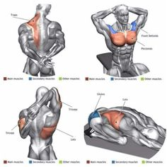 Upper-back weight exercises Abs Workout Routines, Gym Workout Tips, Biceps Workout, Workout Challenge, At Home Workouts, Back Weight Exercises, Stretching Exercises, Stretches, Best Chest Workout