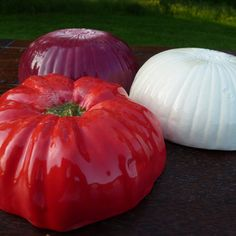 Salsa Set of 3 tomato white onion red onion by vegetabowls