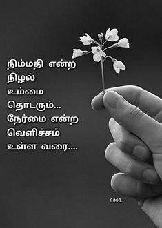 Love Quotes, Inspirational Quotes, Whatsapp Status Quotes, Tamil Language, Morning Wish, Meaningful Words, Morning Quotes, Positive Quotes, Philosophy