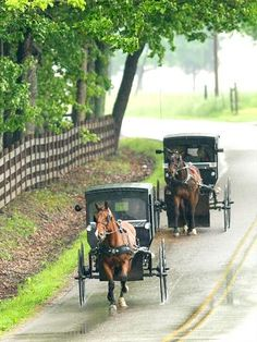 Most afternoons, you'll see Amish walking home from work and school along Adams County's country roads. You might also catch a glimpse of horse-drawn buggies.