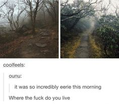 No seriously where the fuck do you live i wanna go there