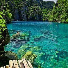 Kayangan Lake, Coron Island, Palawan, Philippines. Like a little secret oasis in the middle of an island! Hard to get to.