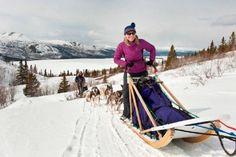 Yukon im Winter - SK Touristik macht's möglich! #dogsledding