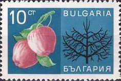Sello: Fruits (Bulgaria) (Economic achievements) Mi:BG 1733,Sn:BG 1607,Yt:BG 1525