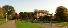Westerpark - the nicest park in town