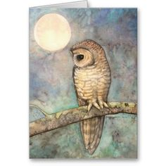 Northern Spotted Owl Wildlife Fine Art Greeting Card