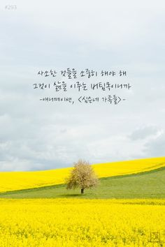 꿈일기 ::: 라온제나 Korean Words Learning, Korean Language Learning, Wise Quotes, Famous Quotes, Inspirational Quotes, K Wallpaper, Wallpaper Quotes, Korean Writing, Korean Drama Quotes