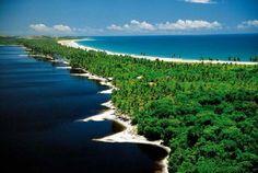 Bahia State - brasil