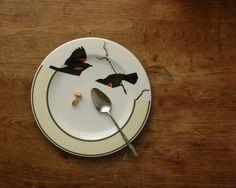 Jason Miller Studio Ceramics