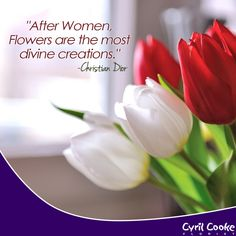 best florist quotes images flowers floral quotes hd flowers
