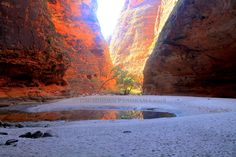 Discovery : Cathedral Gorge (of The Bungle Bungles) Discovery, Cathedral, National Parks, Nature, Painting, Naturaleza, Painting Art, Cathedrals, Paintings