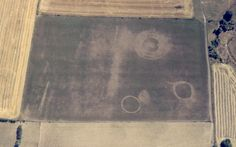 Racton crop marks - stunning ploughed out barrows!