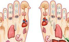 Toto je dôvod, prečo by ste si mali masírovať nohy každý večer pred spaním - Báječný lekár