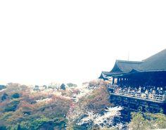 Kiyomizu Temple. Spring