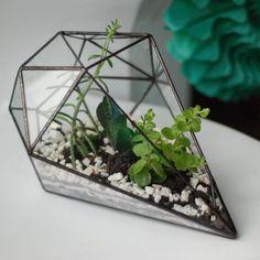 Terrarium | Florarium. CANBY GLASS