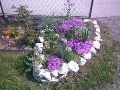 Резултат слика за ukrasno bilje za kamenjar