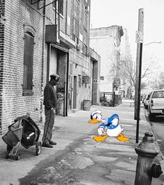 Donald cherche toujours la bagarre