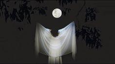 tipoligado: A mais bela lua....