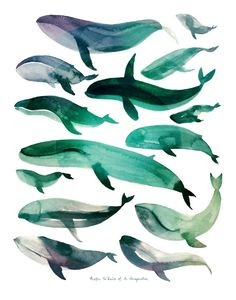 Pacific Whales of an Imagination Art Print