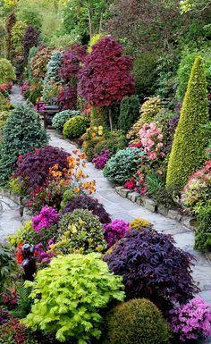 English garden. Wonderful eye for color. The British DO love their gardens.