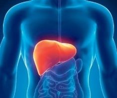 Some types of liver cancer are on the rise in the United States. The doctors at UT Southwestern in Dallas discuss the symptoms and types of liver cancer. Natural Liver Detox, Liver Detox Diet, Natural Health, Natural Foods, Liver Cancer, Liver Disease, Heart Disease, Drainer Le Foie, Kidney Cleanse