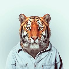 """Zoo Portraits"" by Yago Partal"