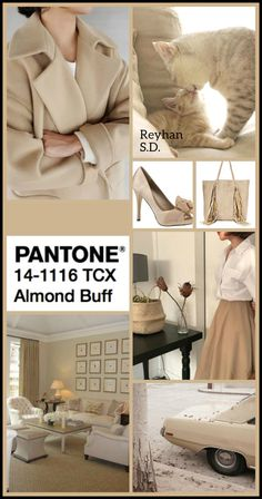 '' Almond Buff : Pantone Fall/ Winter 2018 2019 Classic Color '' by Reyhan S. Fashion Colours, Colorful Fashion, Color Combinations, Color Schemes, Color Trends 2018, Color Collage, Color Me Beautiful, Moda Casual, Color Balance
