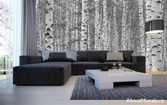Buy this birch tree wallpaper to sweep you away with majestic black and white birch trees. Feel the serenity (and drama) wall murals add. Tree Wallpaper Living Room, Birch Tree Wallpaper, Bedroom Murals, Wall Murals, Birch Tree Mural, White Birch Trees, Acoustic Panels, Tree Forest, White Walls