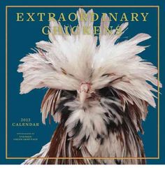 I love Chickens! Can I get this calendar?