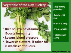 Food Fact: Celery Green vegetable which must be present on the plate and be a part of salad.  Consumption of Celery improves body's metabolism and digestion.
