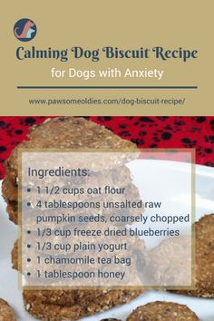 Calming Dog Biscuit Recipe for Old Dogs with Anxiety and Stress Got a dog with anxiety? Use this dog biscuit recipe to make some calming treats to help him/her. Dog Biscuit Recipes, Dog Treat Recipes, Healthy Dog Treats, Dog Food Recipes, Pet Treats, Recipe For Dog Biscuits, Organic Dog Treats, Homemade Dog Cookies, Homemade Dog Food