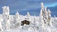 Parque Nacional Riisitunturi. Finlandia.