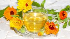 Calendula Soothes Reflux and Skin Problems In spring, we all like to hike and play outdoors. Getting bumped and bruised. Herbal Remedies, Health Remedies, Natural Remedies, Mastic Gum, Calendula Oil, Health Matters, Gut Health, Healing Herbs, Health Articles