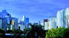 #skyline #saopaulo #traveladdiction #brasil #sky #architecture #buildings #igers #instalike #googlephotos #stylized #ariquezadeviajar #september