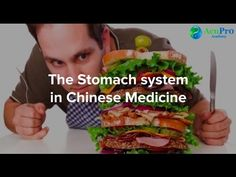 All About the TCM Stomach   AcuPro Academy
