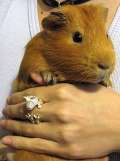 Need that piggy ring ;-)