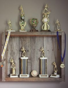 Pallet Wood Trophy Case Monty Coleman