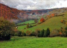 Navarra puede estar bien orgullosa de ser uno de los destinos naturales más bonitos de España. Además, es un lugar muy bien conservado, con rutas y caminos que te llevan a conocer los paisajes más espectaculares. En esta época, El Bosque o Selva de Irati está más espectacular que nuca.