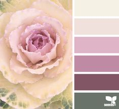 nature tones - Such a nice soft palette Colour Pallette, Colour Schemes, Color Patterns, Color Combos, World Of Color, Color Of Life, Design Seeds, Color Swatches, Color Stories