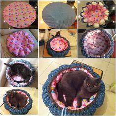DIY Pumpkin Bed for Cats