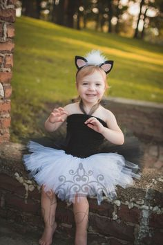 Check out this item in my Etsy shop https://www.etsy.com/listing/463213554/skunk-tutu-dress-black-white-halloween