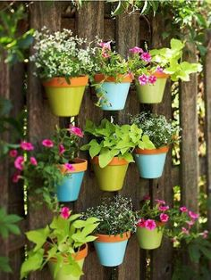 Use Frenchic chalk paint on your outdoor pots!